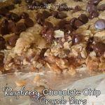 Raspberry Chocolate Chip Crumb Bars {Recipe}