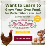 Homesteading No Matter Where You Live {UHLB 2015}