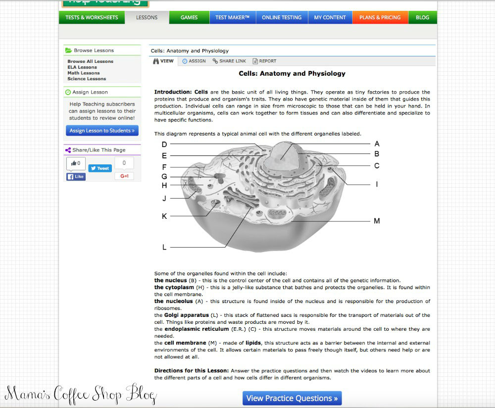 Mama's Coffee Shop Blog - HelpTeaching - Biology & Cells