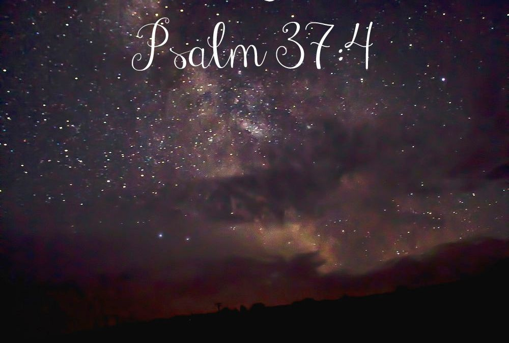 Midnights with Jesus {Psalm 37:4} & LinkUp