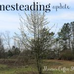 The Water Well Has Been Drilled – We Have Water {Homesteading}