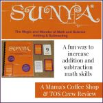 {Product Review} Adding and Subtracting Card Game from Sunya Publishing