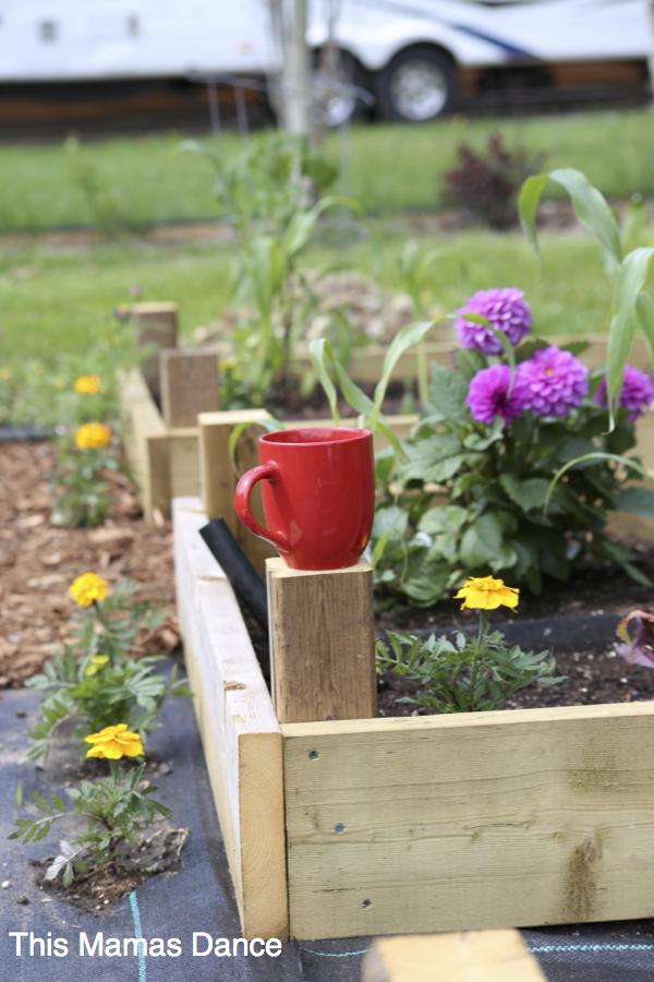 raised planter box progress