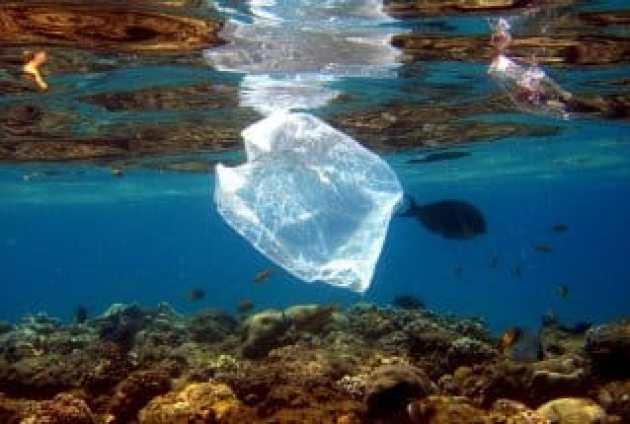 plástico donde no debería