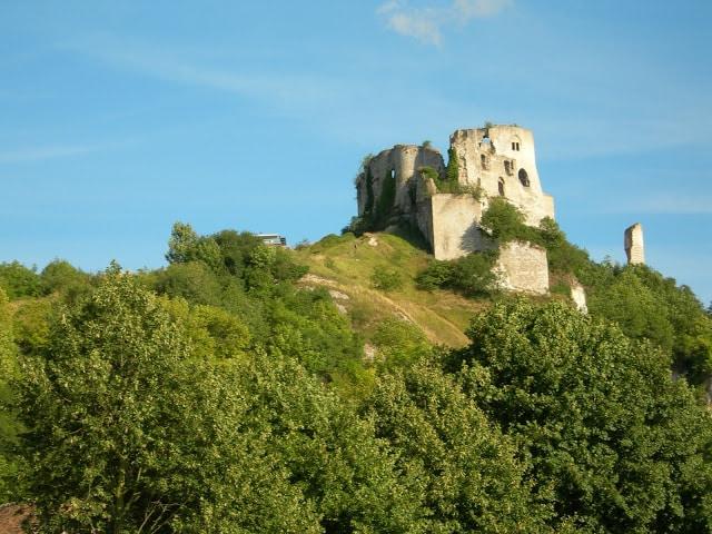 Año Internacional de los Bosques 2011: Sur de Francia 8