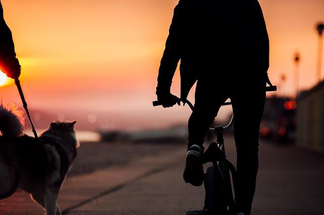 Felicidad de andar por casa: pequeños momentos que dan color a la vida 3