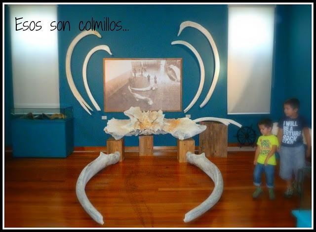 Museo Mar Galicia Historia