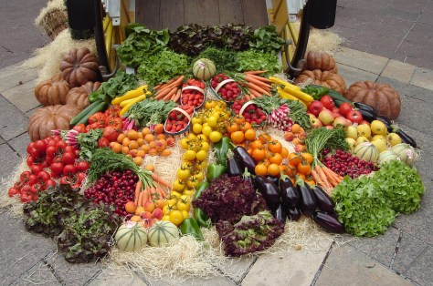 Fruits and Vegetables - Colors of the Rainbow
