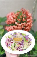 Asian-Style Quinoa Salad 062319 (5)