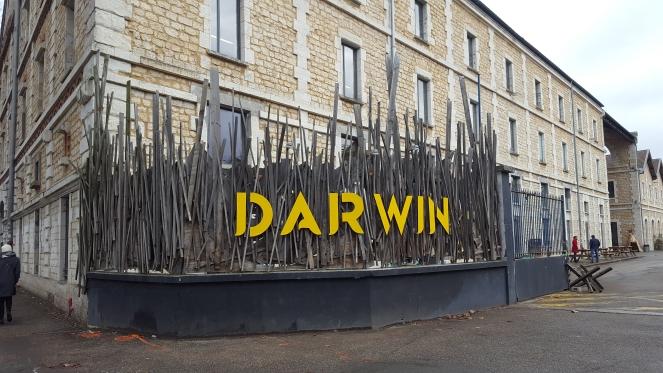 Darwin à Bordeaux