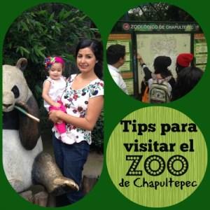 Tips para visitar el Zoo de Chapultepec con niños