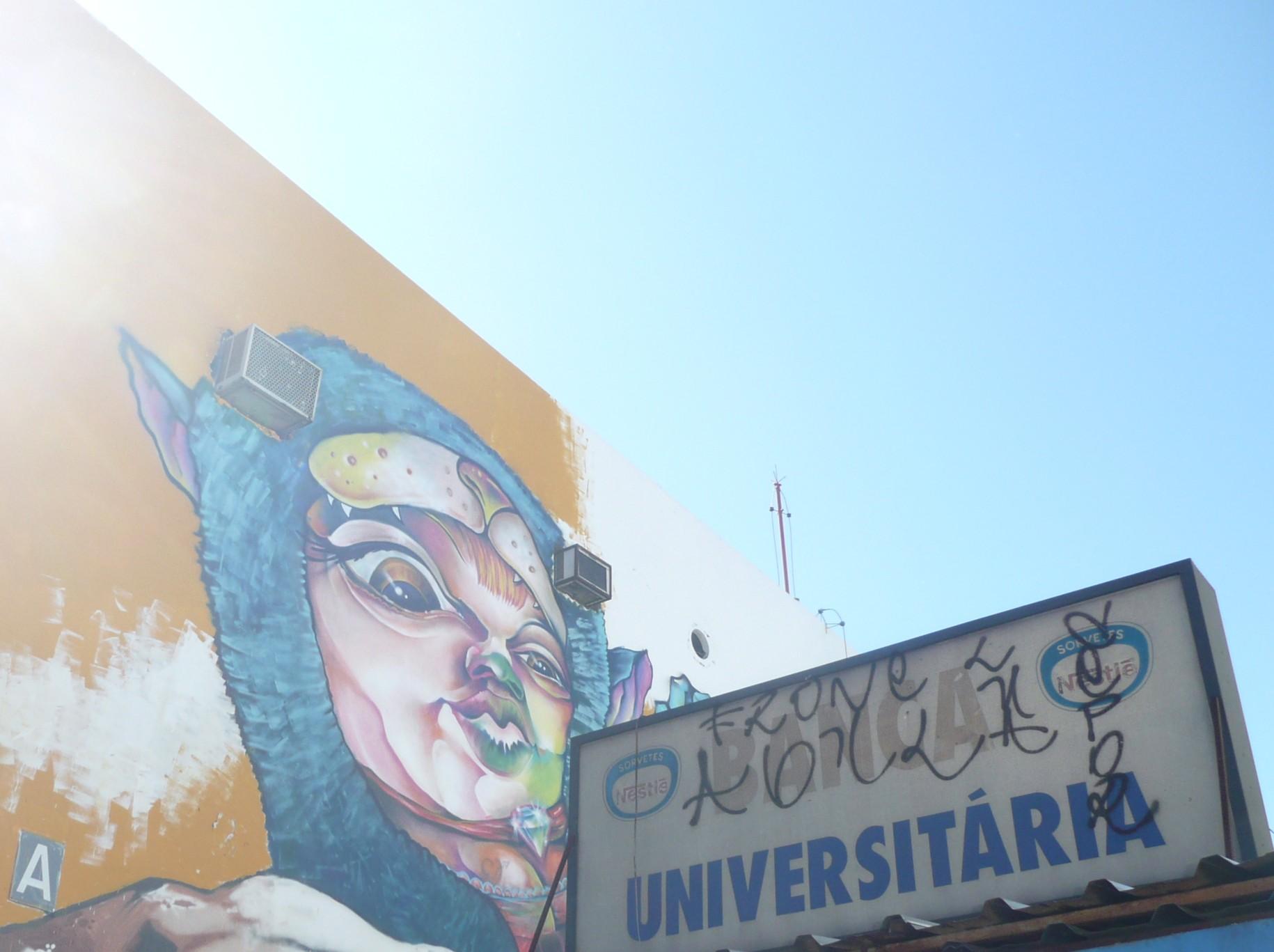 muro de brasilia 15