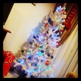 Christmas tree is finally up
