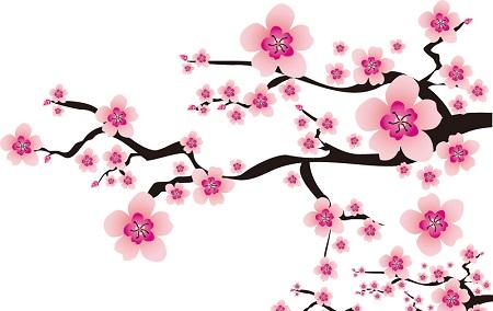 春分の候という時候の挨拶はいつ使う?意味と読み方も