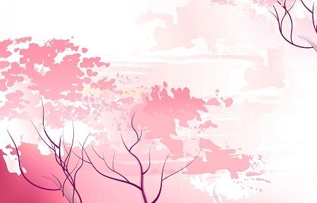 さくらんぼは桜の木からできるは嘘?違いは?