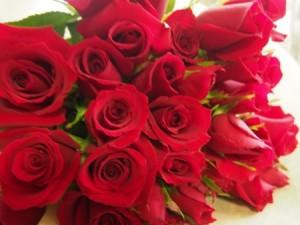 バラの花束の本数で花言葉の意味が変わる?プロポーズは?