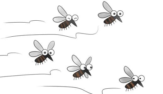 蚊の寿命は短い?でも家の中で越冬する種類もいるって本当?