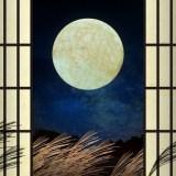 満月の画像