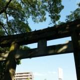 神社の画像