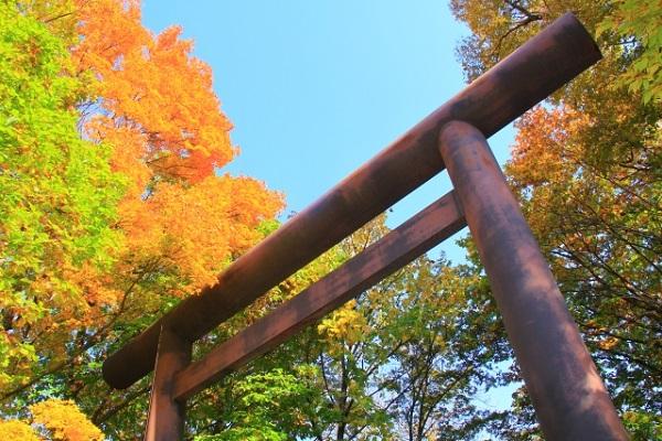 北海道神宮の画像