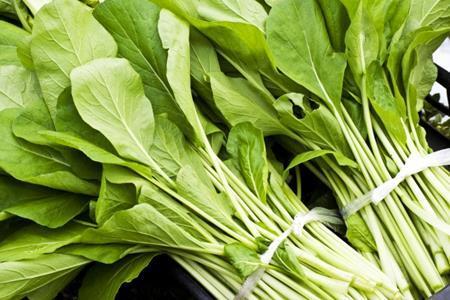 ほうれん草と小松菜の違いとは?見分け方や栄養価の違いをご紹介!