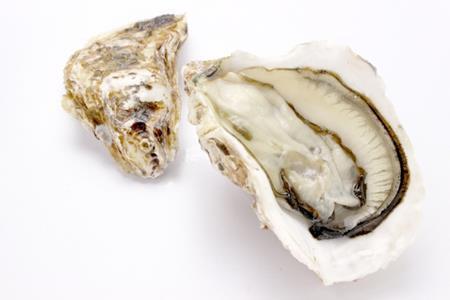 牡蠣の旬は夏?真牡蠣と岩牡蠣の違いって知っていますか?