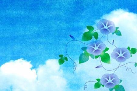 琉球朝顔(オーシャンブルー)が危険な植物な理由は毒がある?