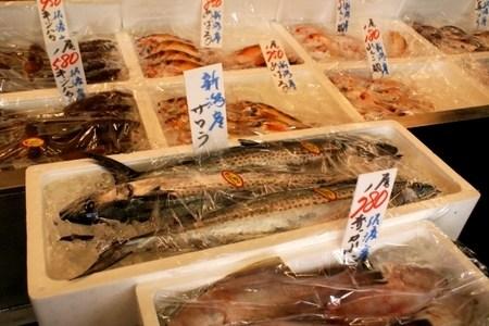 鰆(サワラ)は出世魚なの?ワラサは同じ種類の魚?違いはある?