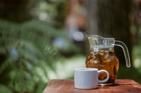 麦茶が臭いのは腐るから?匂いの原因と対処法を考える