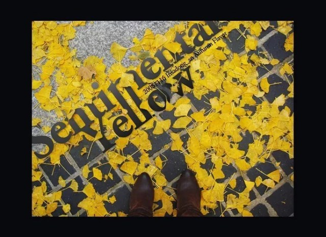 Autumn Flavor Typography - 23 of Inspirational Typography