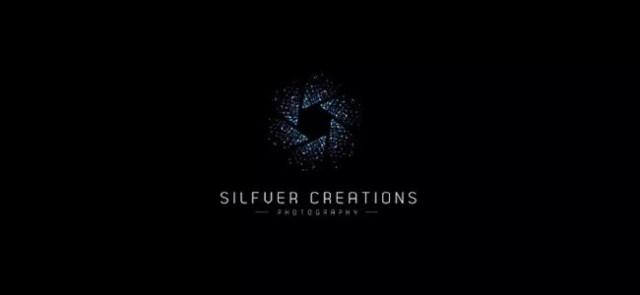 Silfver Creations - Inspiration logo designs #2
