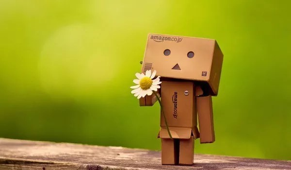 Danbo - Cute Danbo - The Japanese Robot Pictures
