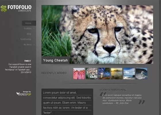 Fotofolio Landscape - 25+ Beautiful Free WordPress Themes