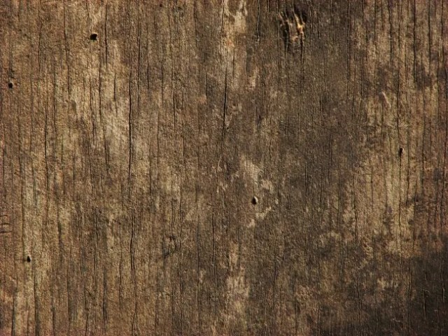 Wood 3 by CharadeTextures e1359620010415 - 200+ Free High Quality Grungy Dirty Wood Textures