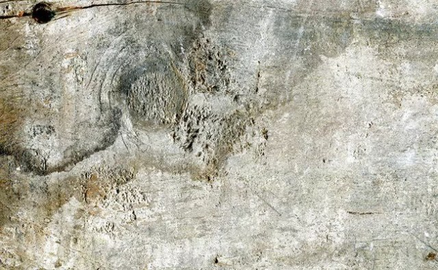 5 Grunge Wood Textures