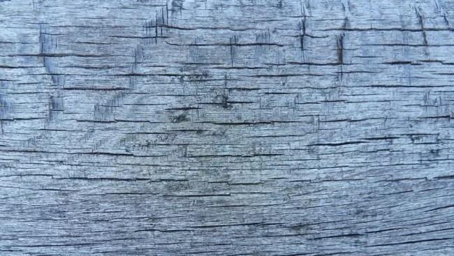 wood texture 14 by carlbert d4tzgz5 e1359620226701 - 200+ Free High Quality Grunge Wood Texture