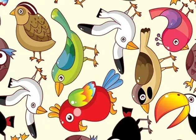 funnybard l - Colorful Funny Birds Vector