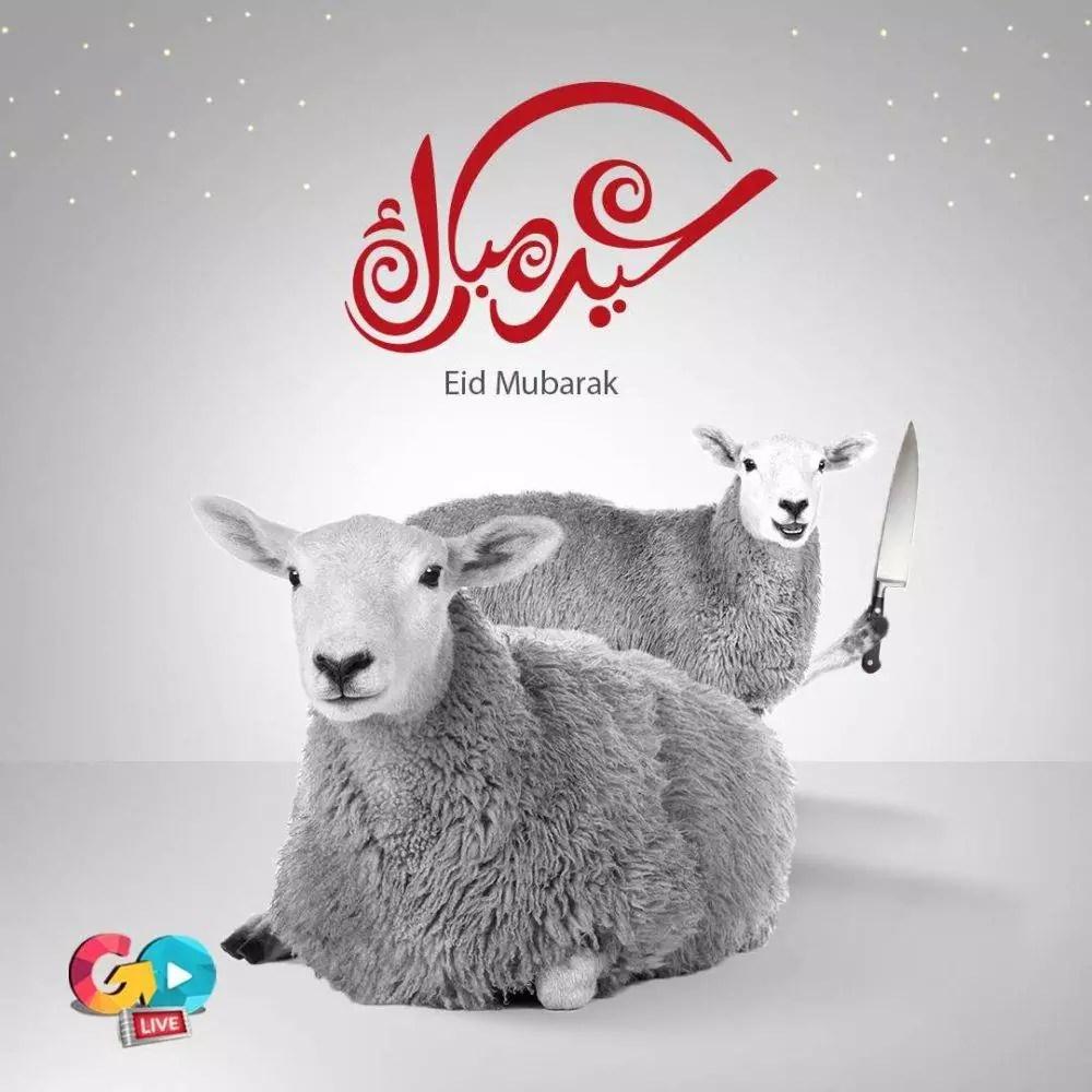 Eid Adha Mubarak 1 e1534252245493 - Eid Al Adha Al Mubarak - Amazing Designs For Inspiration