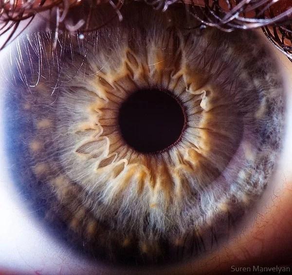 87 - Macro photography Of Human Eyes