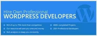 rsz wordpress - Top WordPress Photoshop Plugin For Web Designers