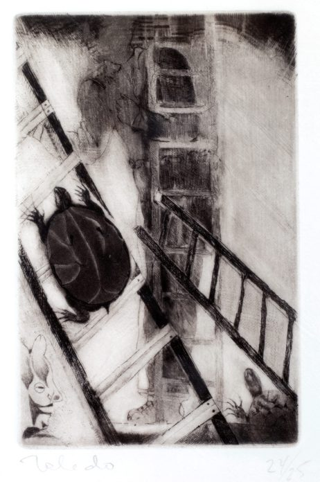 An etching in black and white of a turtle on a ladder, with other ladders in the background