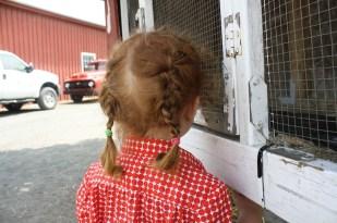 Cristina buscando los conejos en sus jaulas.