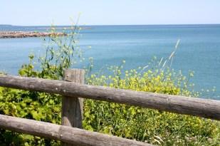 Un día hermoso de verano a la orilla del lago.