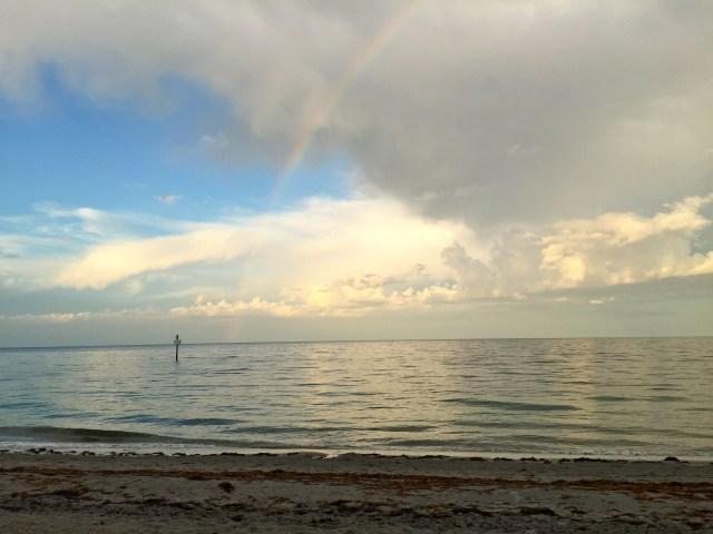 Cazadoras de arcoiris