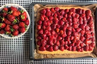 Erdbeere als Heilpflanze alte Getreidesorten