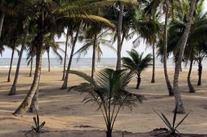 Volunteer-Projekt für Familien in Ghana