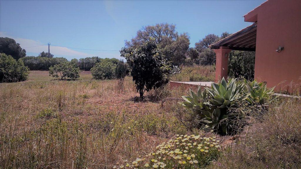 Ferien für Mama an der Algarve - Guia - Landhaus - Portugal