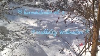 Der Karmakalender 2017: grün, plastikfrei, frei - Ideen für nachhaltige Weihnachten