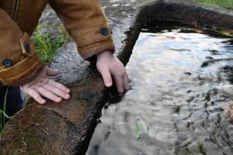 Leben mit Kindern im Schwarzwald #kiezmitkind