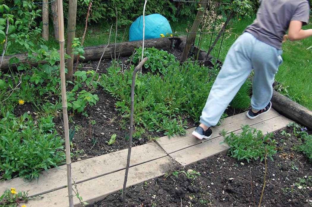 Ein wilder Garten zum Spielen und Toben